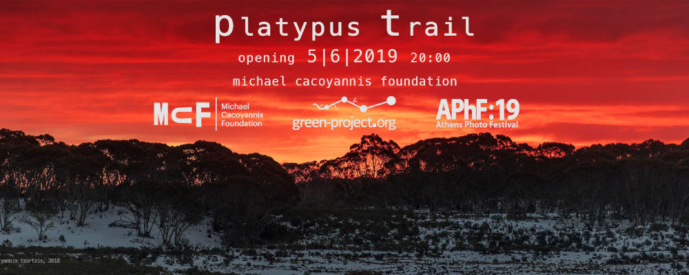world environment day: platypus trail photo exhibition